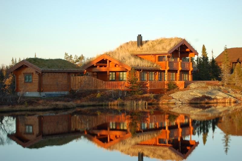 Case in tronchi lavorati a macchina eco case in legno for Disegni di case di tronchi
